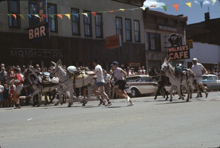 Several humans and burros begin the burro race in Leadville Colorado