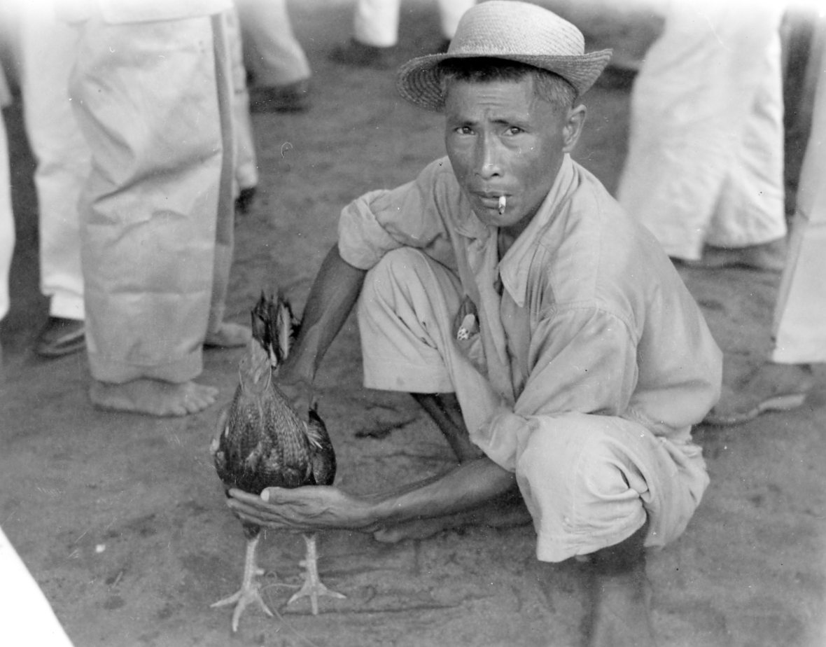 Filipino with Rooster, 1945 (Photograph: Staff Sgt. W. R. Allen)